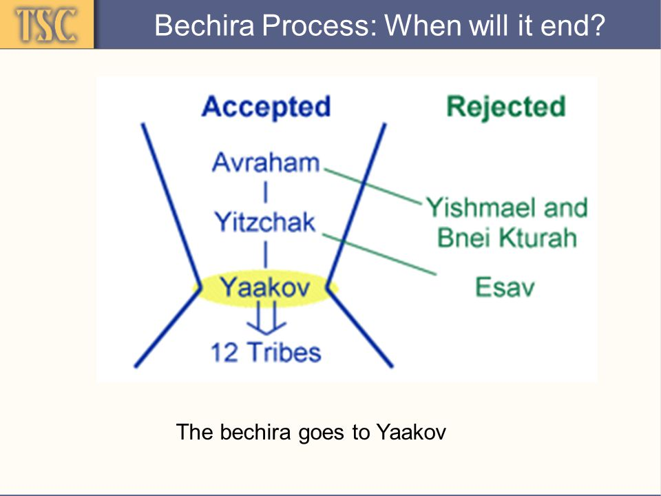 Confirmation of Bechira Extra Promise to Yaakov: Relates to Yaakov's situation - even though he must now leave Eretz Canaan, Hashem will remain with him, take care of him, and ultimately bring him back Immediate Reaction: