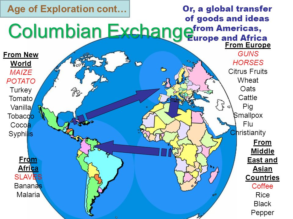 Age of Exploration cont… Or, a global transfer of goods and ideas from Americas, Europe and Africa Columbian Exchange From Europe GUNS HORSES Citrus Fruits Wheat Oats Cattle Pig Smallpox Flu Christianity From Africa SLAVES Bananas Malaria From New World MAIZE POTATO Turkey Tomato Vanilla Tobacco Cocoa Syphilis From Middle East and Asian Countries Coffee Rice Black Pepper