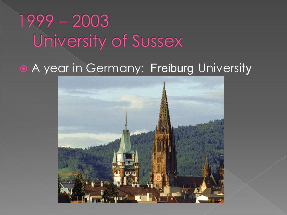  A year in Germany: Freiburg Universit y