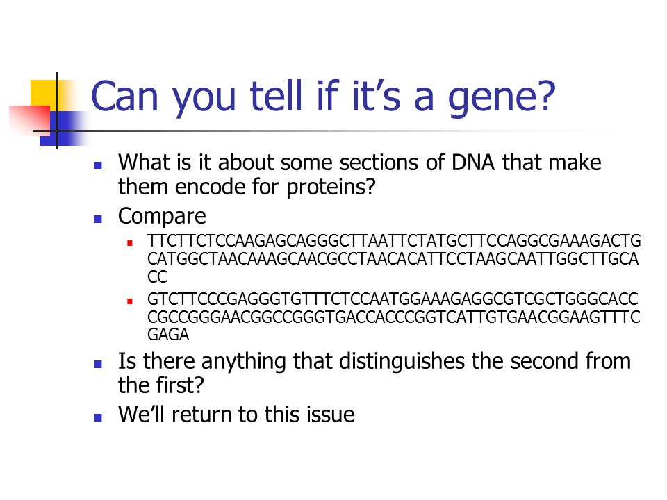 Can you tell if it's a gene? What is it about some sections of DNA that make them encode for proteins? Compare TTCTTCTCCAAGAGCAGGGCTTAATTCTATGCTTCCAGG