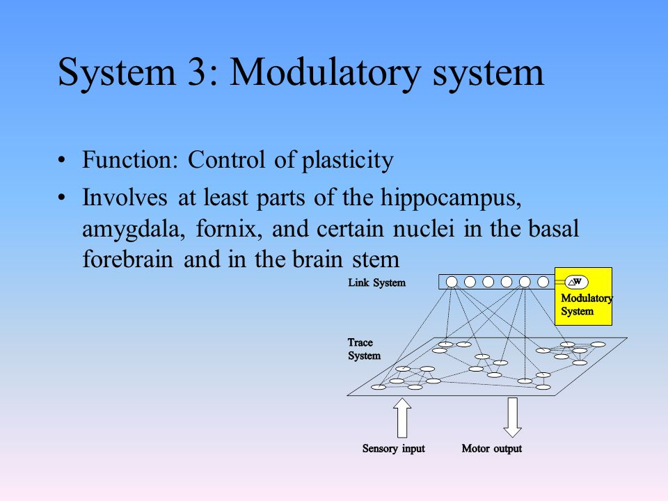 System 3: Modulatory system Function: Control of plasticity Involves at least parts of the hippocampus, amygdala, fornix, and certain nuclei in the ba