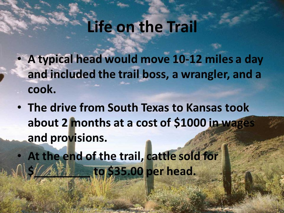 Life on the Trail A typical head would move 10-12 miles a day and included the trail boss, a wrangler, and a cook. The drive from South Texas to Kansa