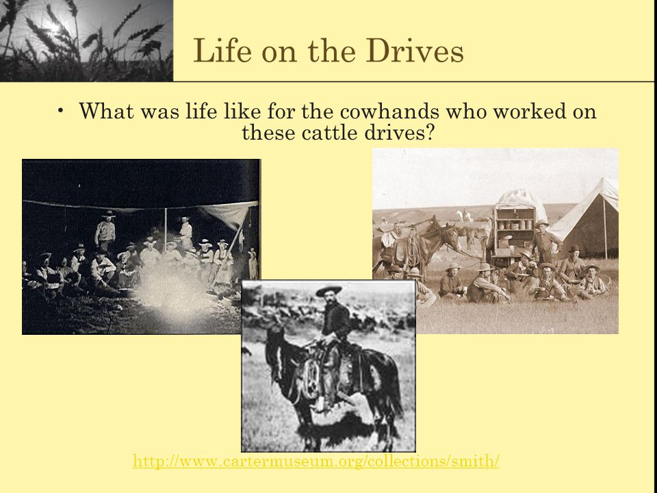 Life on the Drives What was life like for the cowhands who worked on these cattle drives? http://www.cartermuseum.org/collections/smith/