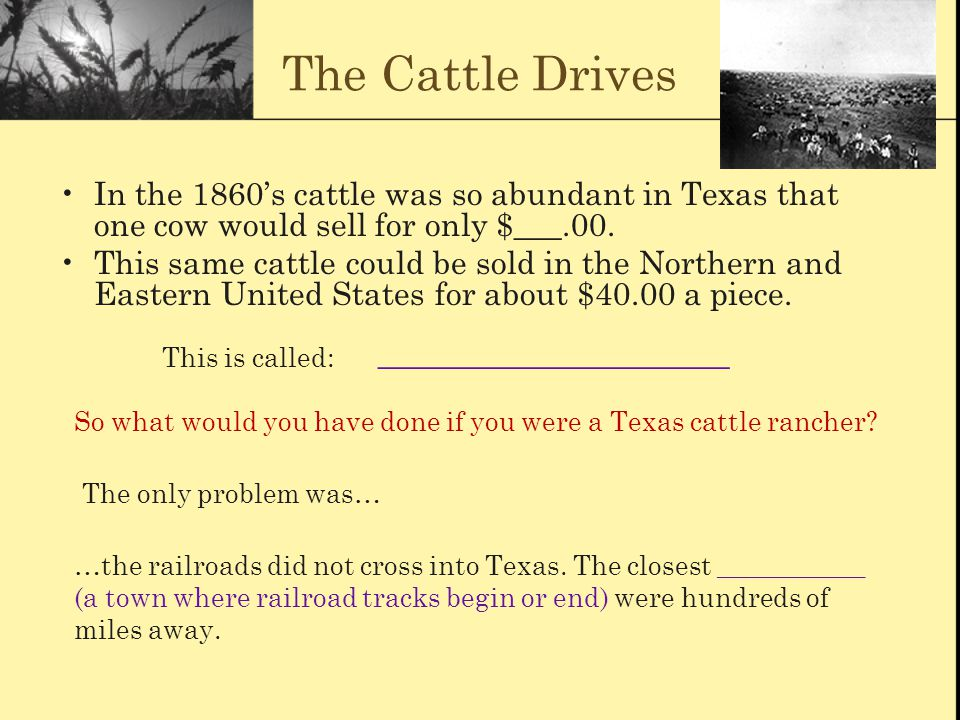 The Cattle Drives In the 1860's cattle was so abundant in Texas that one cow would sell for only $___.00. This same cattle could be sold in the Northe
