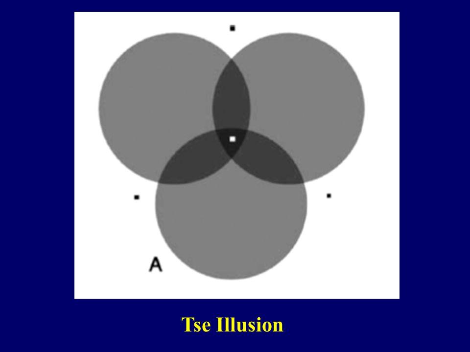 Tse Illusion