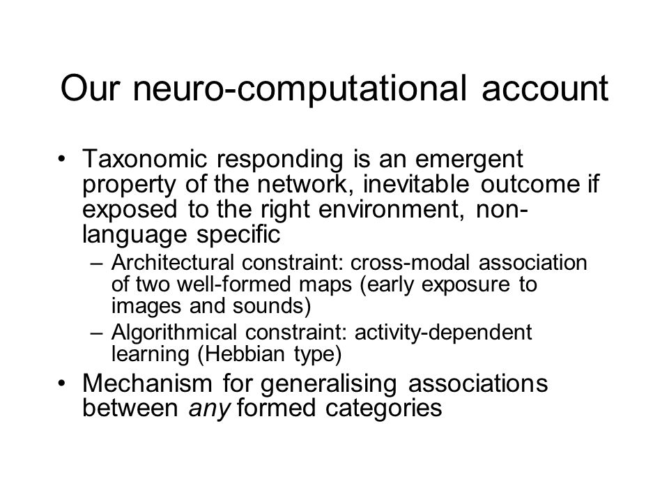 Our neuro-computational account Taxonomic responding is an emergent property of the network, inevitable outcome if exposed to the right environment, non- language specific –Architectural constraint: cross-modal association of two well-formed maps (early exposure to images and sounds) –Algorithmical constraint: activity-dependent learning (Hebbian type) Mechanism for generalising associations between any formed categories