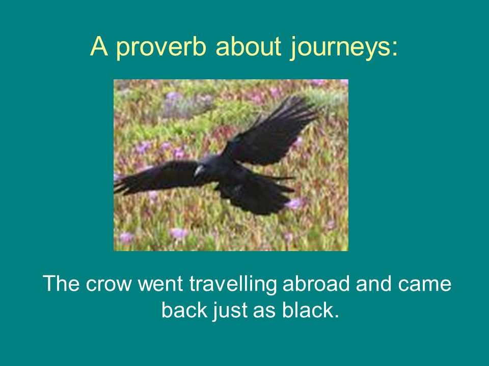 A proverb about journeys: The crow went travelling abroad and came back just as black.
