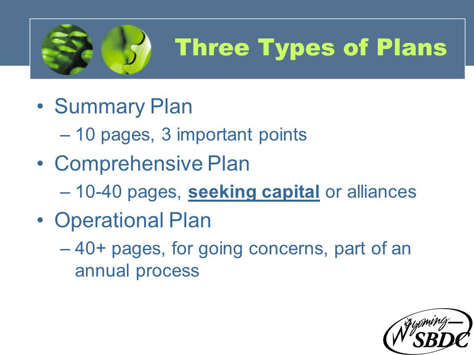 7 Three Types of Plans Summary Plan –10 pages, 3 important points Comprehensive Plan –10-40 pages, seeking capital or alliances Operational Plan –40+ pages, for going concerns, part of an annual process