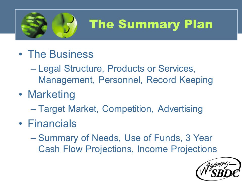 8 The Summary Plan The Business –Legal Structure, Products or Services, Management, Personnel, Record Keeping Marketing –Target Market, Competition, A