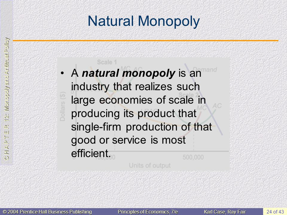 C H A P T E R 12: Monopoly and Antitrust Policy © 2004 Prentice Hall Business PublishingPrinciples of Economics, 7/eKarl Case, Ray Fair 24 of 43 Natural Monopoly A natural monopoly is an industry that realizes such large economies of scale in producing its product that single-firm production of that good or service is most efficient.