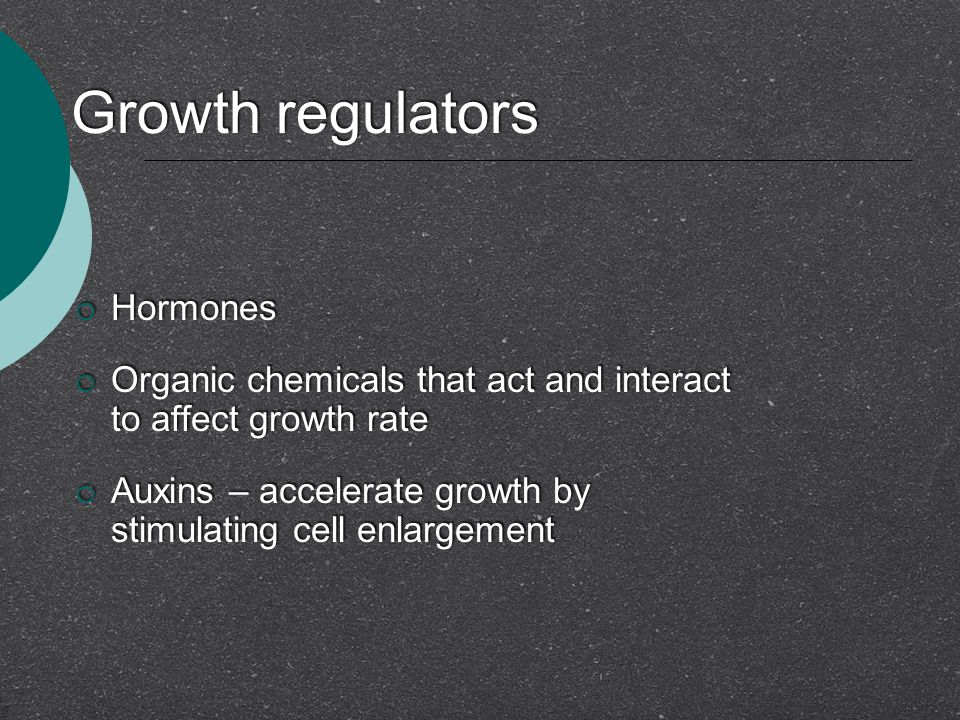 Growth regulators  Hormones  Organic chemicals that act and interact to affect growth rate  Auxins – accelerate growth by stimulating cell enlargem