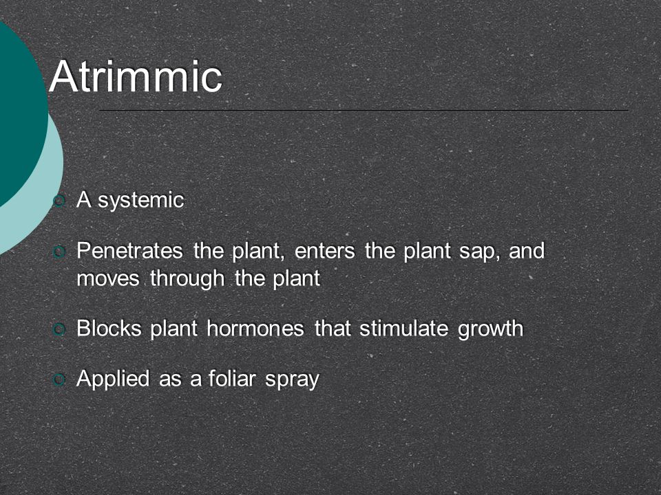 Atrimmic  A systemic  Penetrates the plant, enters the plant sap, and moves through the plant  Blocks plant hormones that stimulate growth  Applied as a foliar spray  A systemic  Penetrates the plant, enters the plant sap, and moves through the plant  Blocks plant hormones that stimulate growth  Applied as a foliar spray
