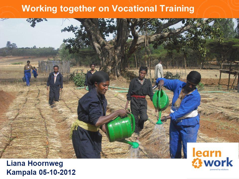 Working together on Vocational Training Liana Hoornweg Kampala 05-10-2012