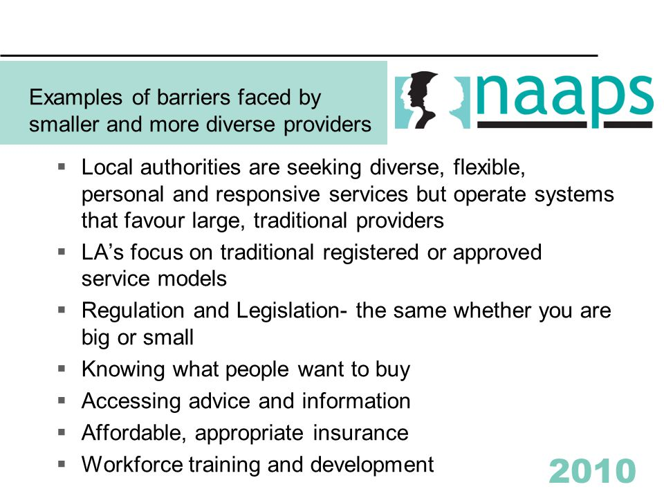 2010 Examples of barriers faced by smaller and more diverse providers  Local authorities are seeking diverse, flexible, personal and responsive services but operate systems that favour large, traditional providers  LA's focus on traditional registered or approved service models  Regulation and Legislation- the same whether you are big or small  Knowing what people want to buy  Accessing advice and information  Affordable, appropriate insurance  Workforce training and development
