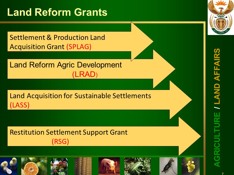 7 AGRICULTURE / LAND AFFAIRS 7 Land Reform Grants Land Acquisition for Sustainable Settlements (LASS) Land Reform Agric Development (LRAD ) Settlement & Production Land Acquisition Grant (SPLAG) Restitution Settlement Support Grant (RSG)