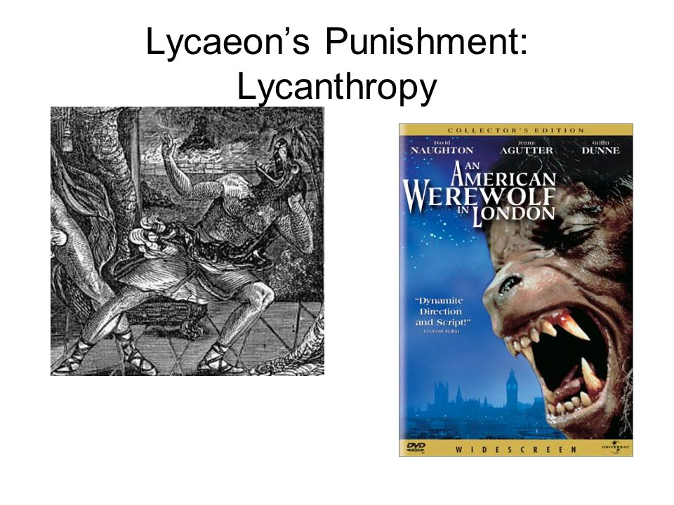 Lycaeon's Punishment: Lycanthropy