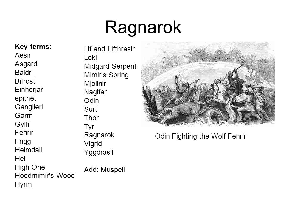 Ragnarok Key terms: Aesir Asgard Baldr Bifrost Einherjar epithet Ganglieri Garm Gylfi Fenrir Frigg Heimdall Hel High One Hoddmimir's Wood Hyrm Lif and