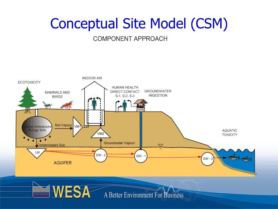 Conceptual Site Model (CSM)