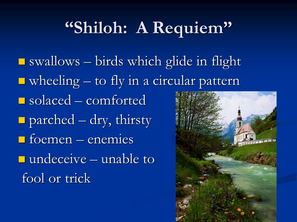 """""""Shiloh: A Requiem"""" swallows – birds which glide in flight swallows – birds which glide in flight wheeling – to fly in a circular pattern wheeling – t"""