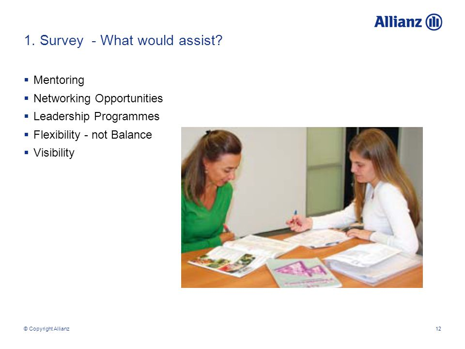 © Copyright Allianz12 1. Survey - What would assist.