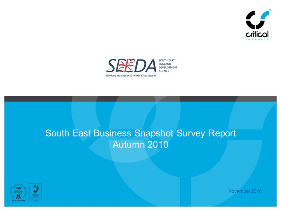 South East Business Snapshot Survey Report Autumn 2010 November 2010