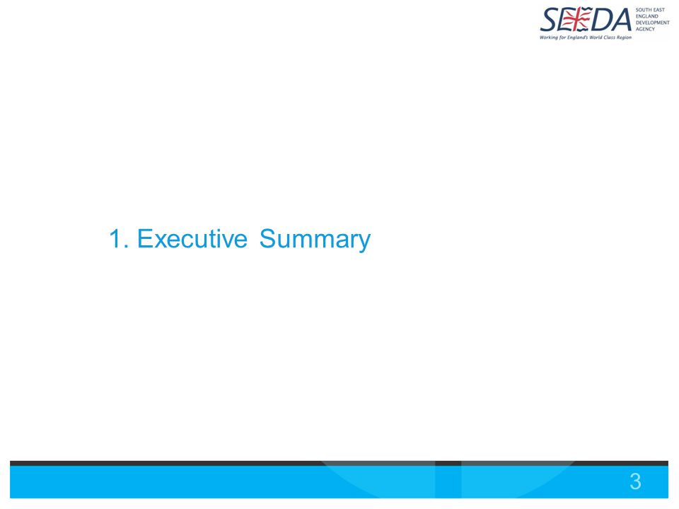 3 1. Executive Summary