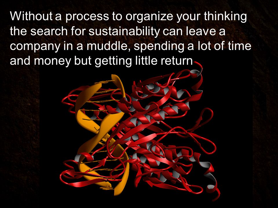 Without a process to organize your thinking the search for sustainability can leave a company in a muddle, spending a lot of time and money but getting little return
