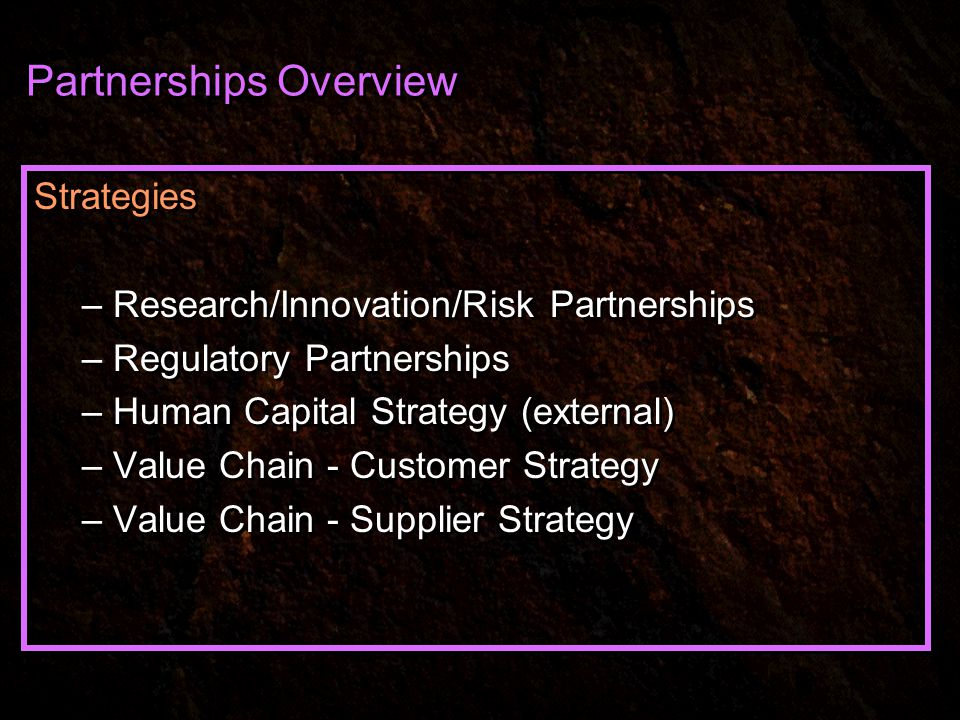 Partnerships Overview Strategies – Research/Innovation/Risk Partnerships – Regulatory Partnerships – Human Capital Strategy (external) – Value Chain - Customer Strategy – Value Chain - Supplier Strategy Strategies – Research/Innovation/Risk Partnerships – Regulatory Partnerships – Human Capital Strategy (external) – Value Chain - Customer Strategy – Value Chain - Supplier Strategy