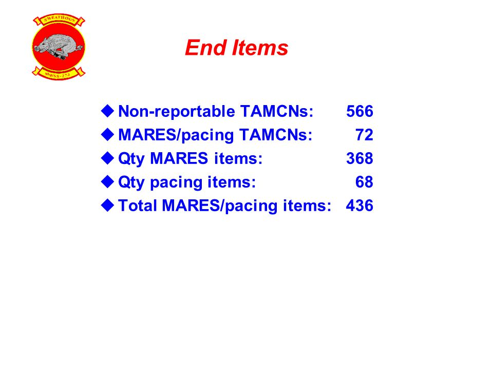 End Items  Non-reportable TAMCNs:566  MARES/pacing TAMCNs: 72  Qty MARES items:368  Qty pacing items: 68  Total MARES/pacing items:436