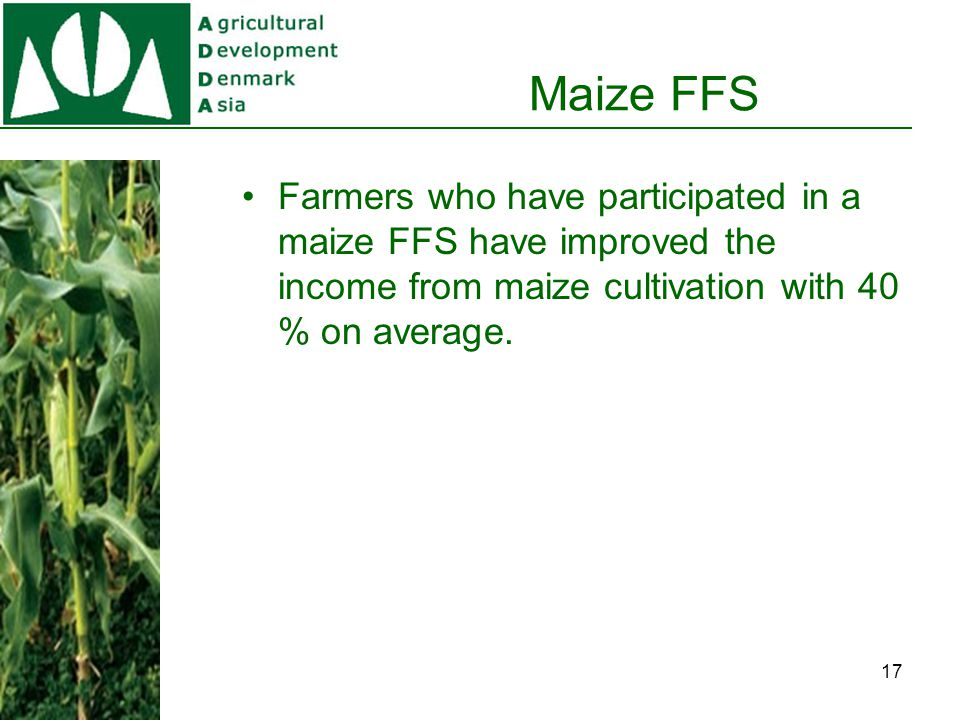 Maize FFS 40% increase of net income for 15,000 trained farmers, 1,245 kg extra / 0,6 ha maize field).