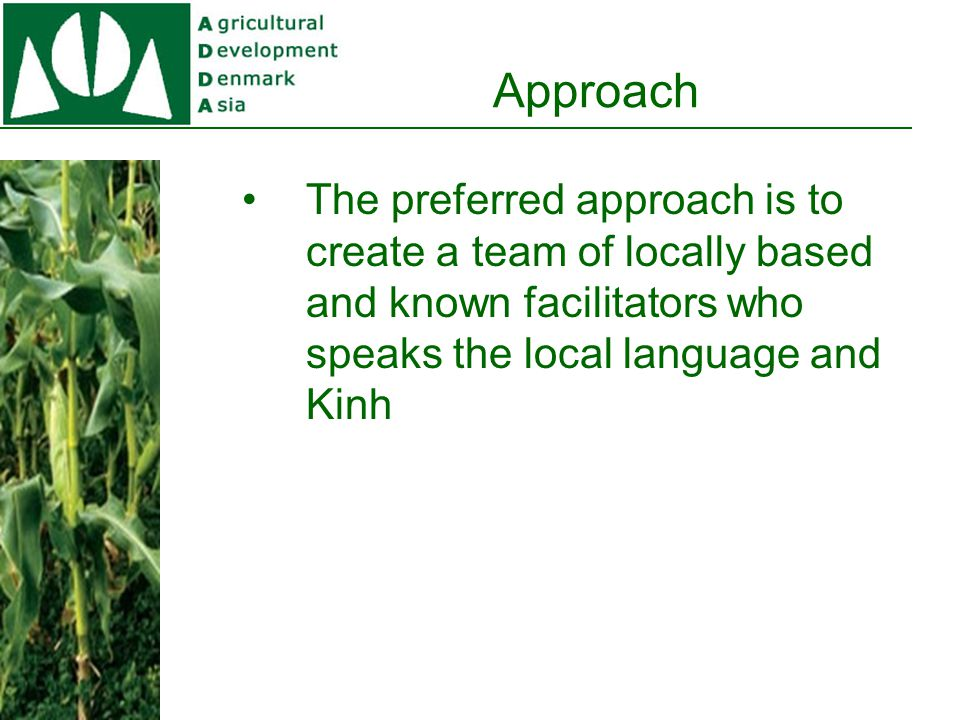 Approach The preferred approach is to create a team of locally based and known facilitators who speaks the local language and Kinh