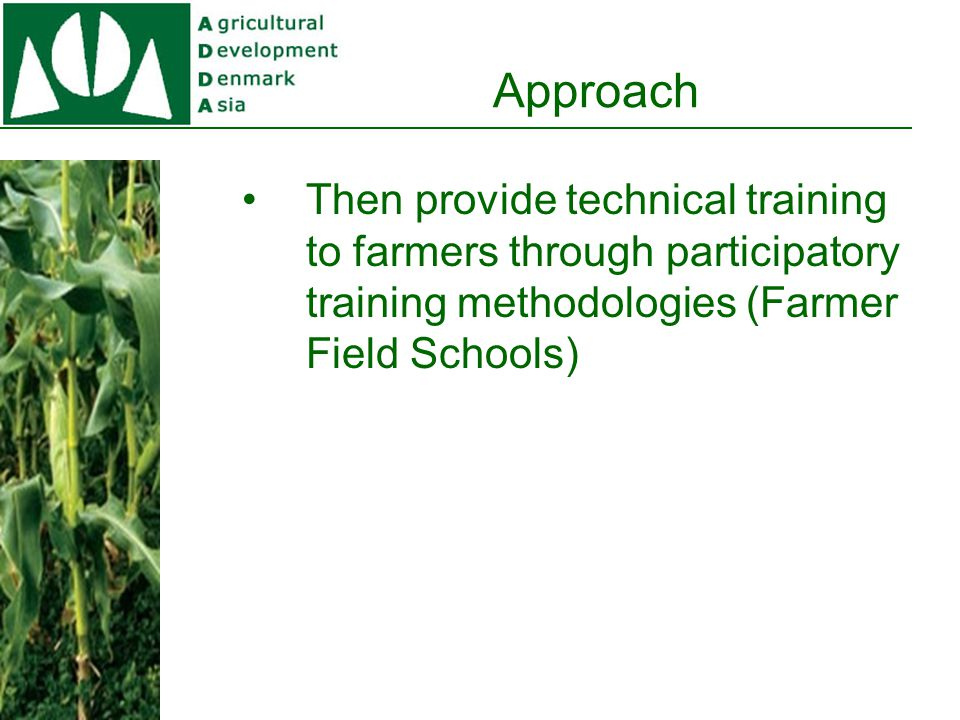 Approach The Farmer Field School training provides the farmers with technical knowledge which usually enable the farmers to increase their income significantly