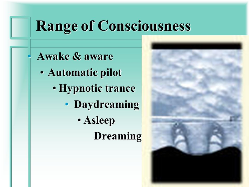 The Psyche All psychological processes, both conscious & unconsciousAll psychological processes, both conscious & unconscious Freud first described the Unconscious, which he likened to the iceberg- Levels of ConsciousnessFreud first described the Unconscious, which he likened to the iceberg- Levels of Consciousness He also described Libidinal Energy- the energy that drives expression of the unconsciousHe also described Libidinal Energy- the energy that drives expression of the unconscious