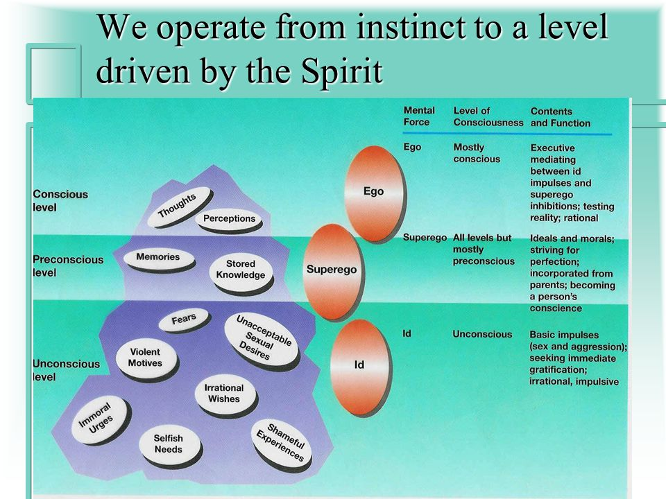 We operate from instinct to a level driven by the Spirit