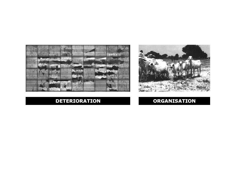 DETERIORATIONORGANISATION