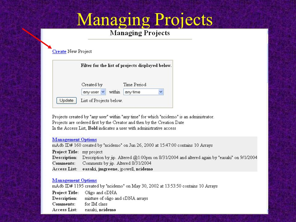 18 Managing Projects