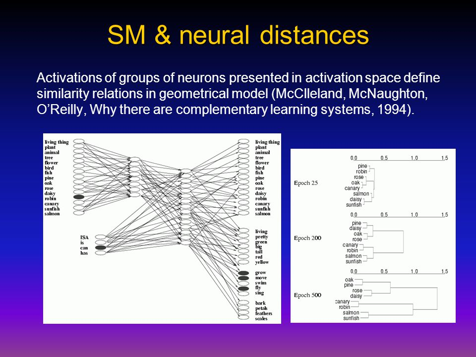 SM & neural distances Activations of groups of neurons presented in activation space define similarity relations in geometrical model (McClleland, McNaughton, O'Reilly, Why there are complementary learning systems, 1994).