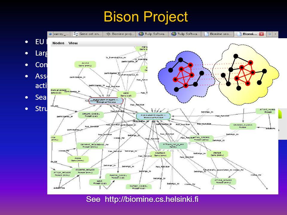 Bison Project EU FP7 Project Large semantic networks. Concepts = activations. Associations = spreading activations. Searching for biassociations. Stru