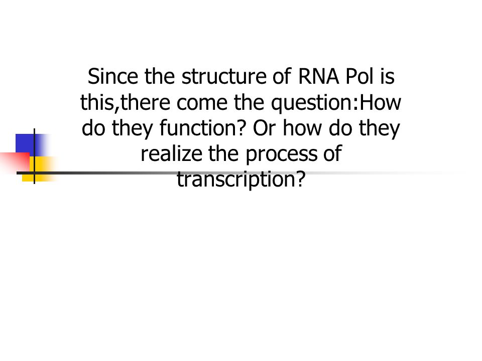 Since the structure of RNA Pol is this,there come the question:How do they function? Or how do they realize the process of transcription?
