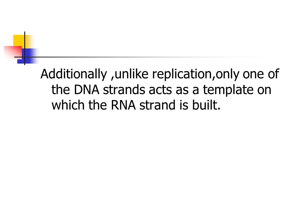 Additionally,unlike replication,only one of the DNA strands acts as a template on which the RNA strand is built.