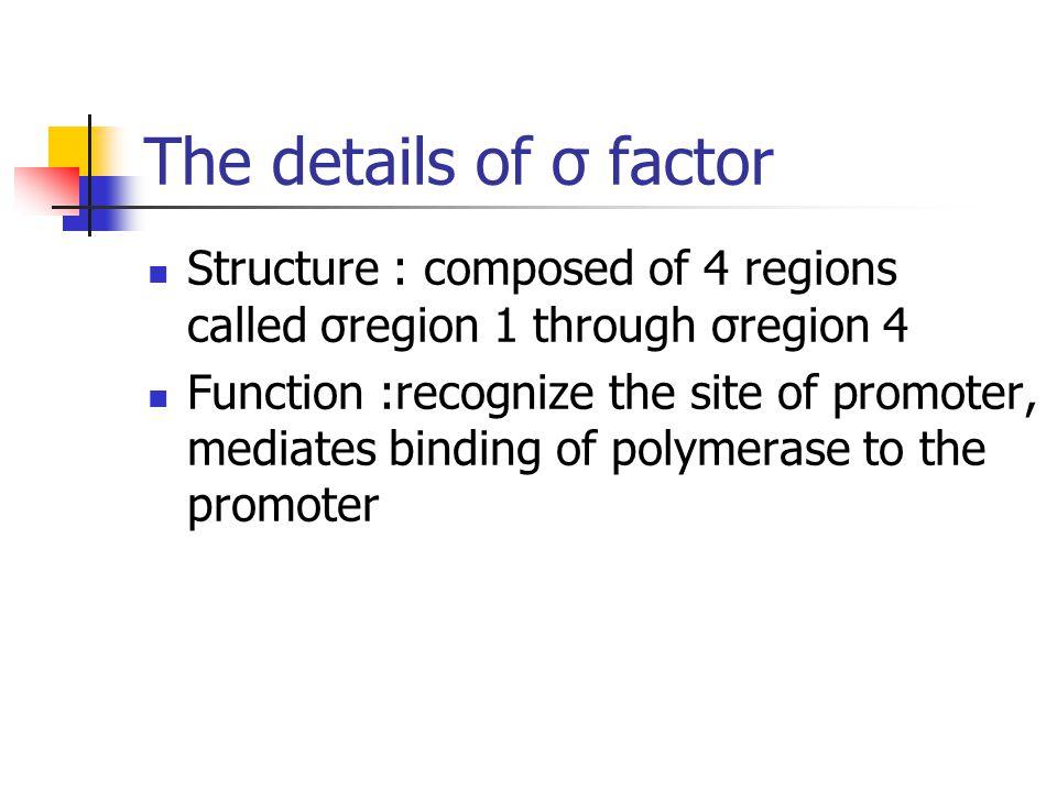 Fig 12-6: regions of  Region 4 recognizes -35 element Region 2 recognizes -10 element Region 3 recognizes the extended – 10 element