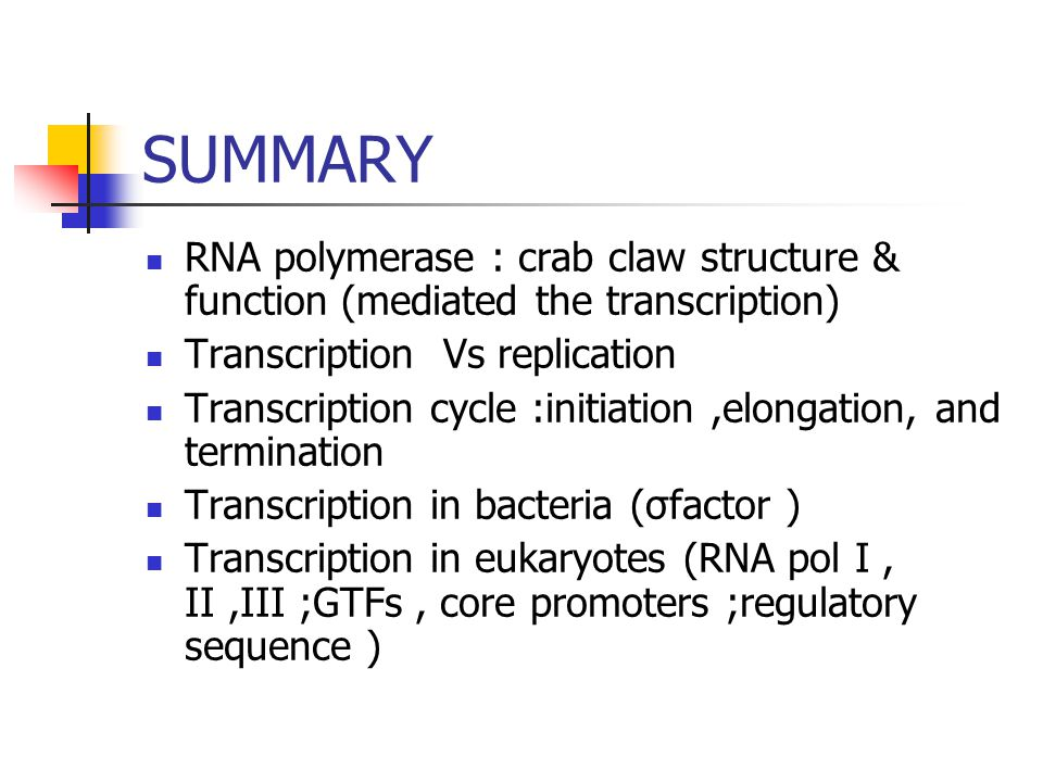 SUMMARY RNA polymerase : crab claw structure & function (mediated the transcription) Transcription Vs replication Transcription cycle :initiation,elon