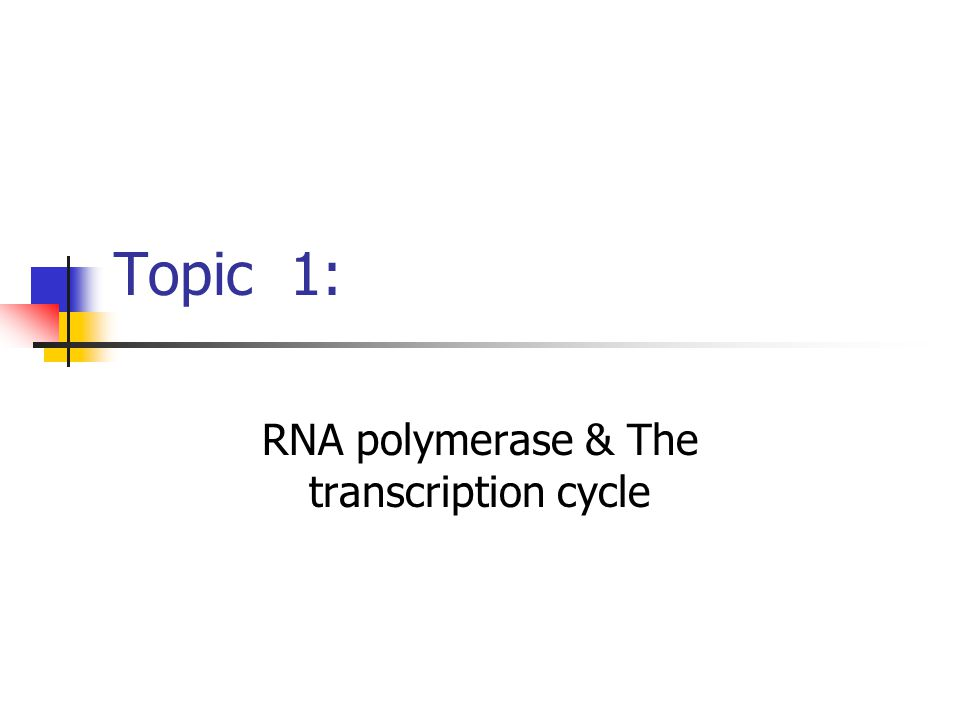 Topic 1: RNA polymerase & The transcription cycle