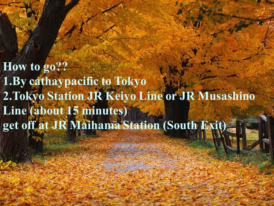 How to go?? 1.By cathaypacific to Tokyo 2.Tokyo Station JR Keiyo Line or JR Musashino Line (about 15 minutes) get off at JR Maihama Station (South Exi