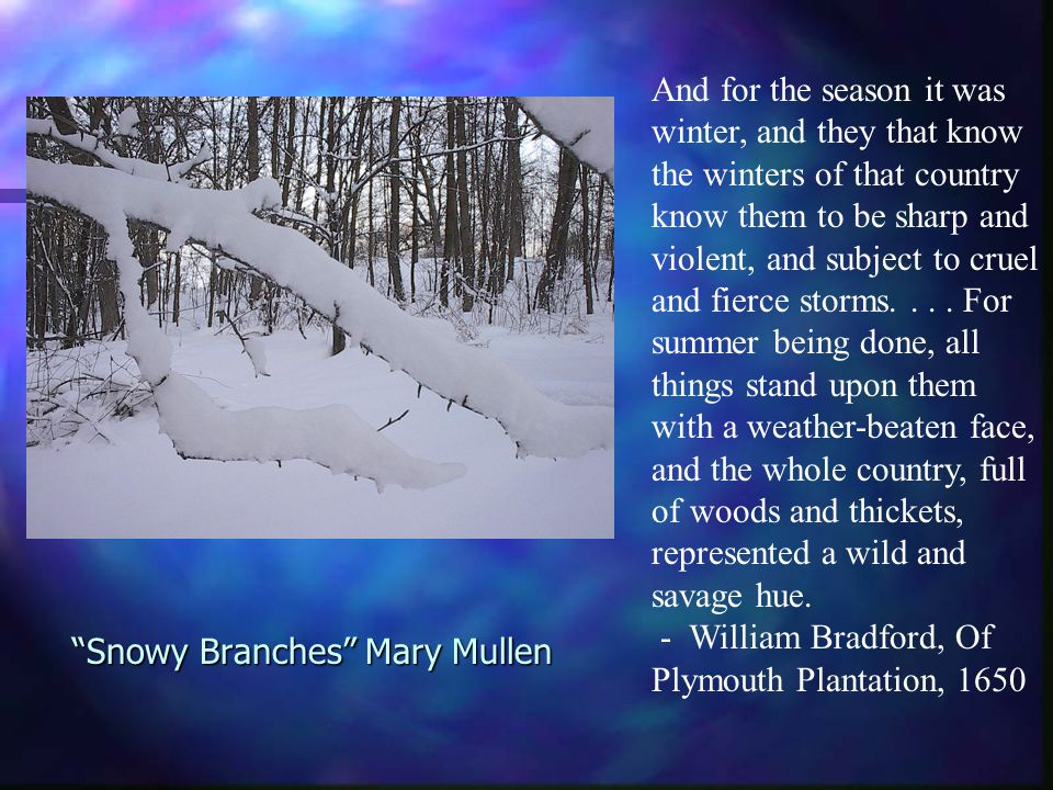 Snowy Branches Mary Mullen And for the season it was winter, and they that know the winters of that country know them to be sharp and violent, and subject to cruel and fierce storms....