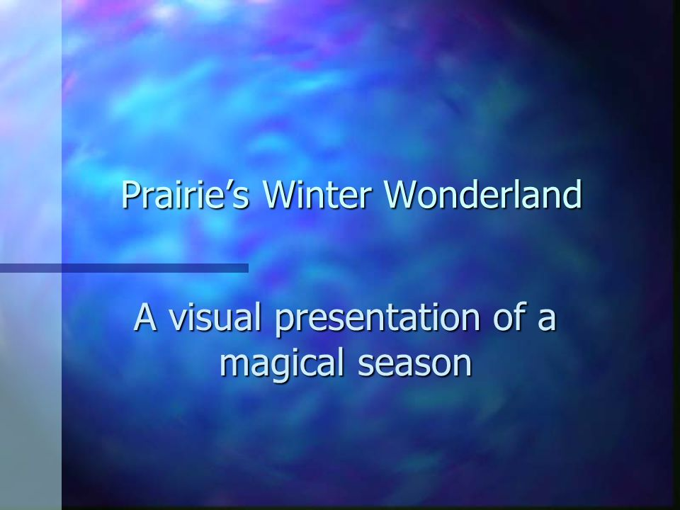 Prairie's Winter Wonderland A visual presentation of a magical season
