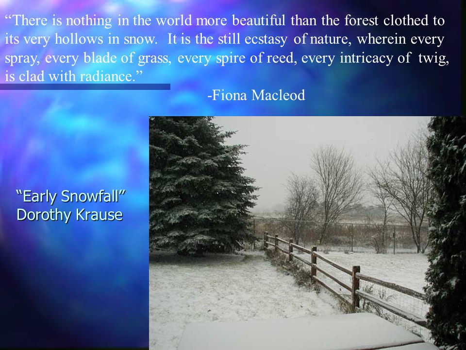 Early Snowfall Dorothy Krause There is nothing in the world more beautiful than the forest clothed to its very hollows in snow.