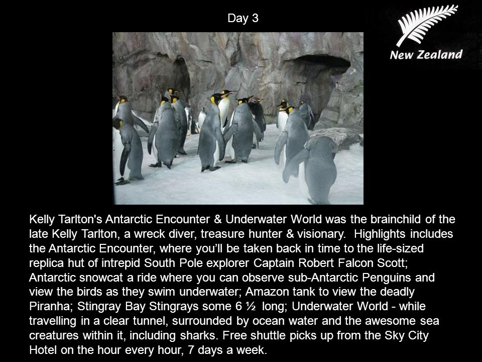 Kelly Tarlton s Antarctic Encounter & Underwater World was the brainchild of the late Kelly Tarlton, a wreck diver, treasure hunter & visionary.