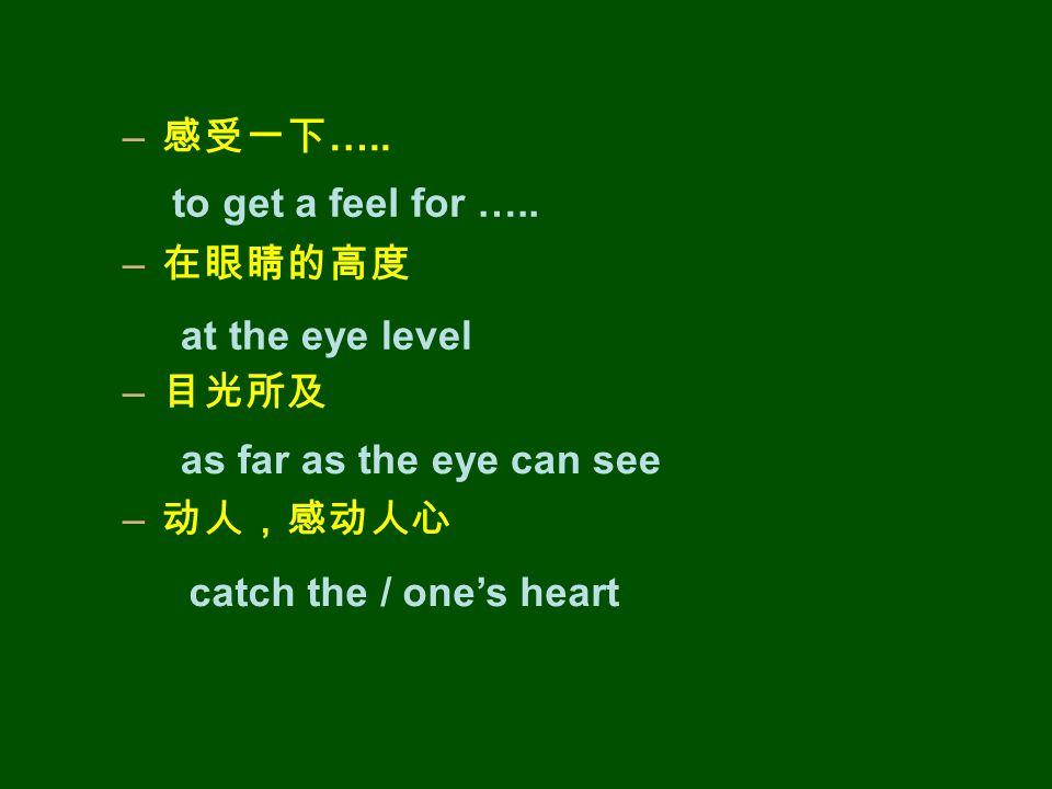 – 感受一下 ….. – 在眼睛的高度 – 目光所及 – 动人,感动人心 to get a feel for …..