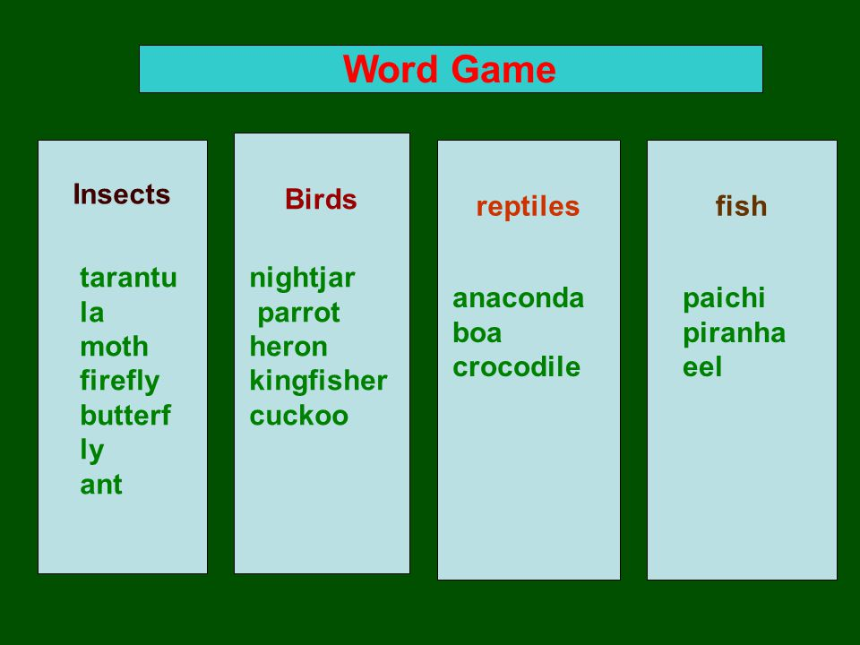Word Game Insects Birds reptiles fish tarantu la moth firefly butterf ly ant nightjar parrot heron kingfisher cuckoo anaconda boa crocodile paichi piranha eel